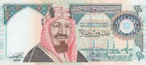 20 SAR Banknote