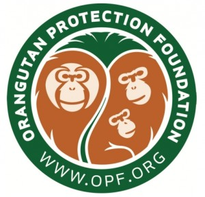 Donate Leftover Currency to Help the Orangutan Protection Foundation - Cash4Coins