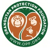Orangutan Protection Foundation Logo